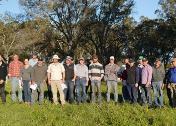 Participants, pictured at Jen Light's challenge pasture at Flaxman Valley, learnt about ways to improve their pastures at BIGG's pasture walk.
