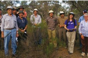 Koonunga sustainability and biodiversity project