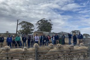 Farmers gain valuable insights on BIGG Containment Ewe Tour